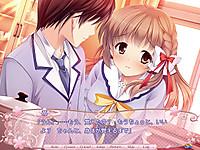 Sakura_norply05