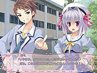 Sakura_norply07