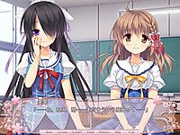 Sakura_norply11