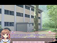Sakura_norply32