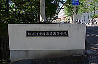 Hoshimemotrabel04