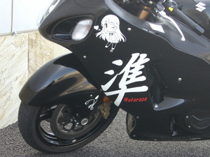 Hayabusa28